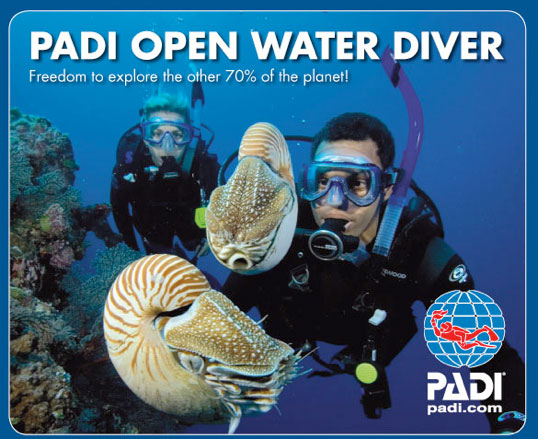 Open Water Thaïlande